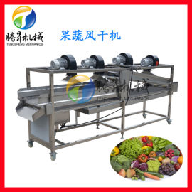厂家定制辣椒清洗生产线 蔬菜风干机