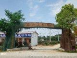 內蒙古水泥假樹大門施工-內蒙古模擬樹大門定製