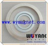 供应N50高性能大规格圆环,环保镀镍磁环