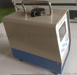 小机型粉尘采样器(24V 直流电)