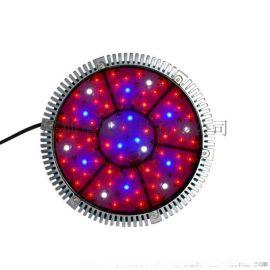 UFO-140W,大棚室内植物灯,植物补光灯,LED植物灯