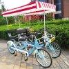 双人情侣观光四轮自行车