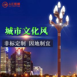 AE照明AE-ZHJGD-01 中华玉兰灯厂家直销户外道路照明led玉兰灯 20-40w带杆8-12米节能中华景观灯