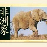 动物名牌动物园说明牌景区景点公园标识牌导游牌导视牌导向牌铜板