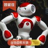 人形机器人智能佳 法国NAO-V5智能人形机器人 娱乐表演教学机器人 质保1年