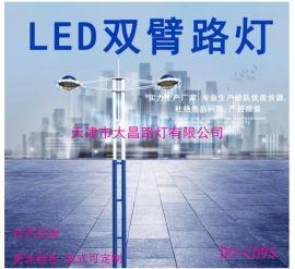 厂家定制LED路灯双头灯臂组合双杆灯