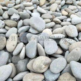 博淼厂家批发天然鹅卵石5-8厘米