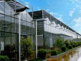 温室、新疆温室、新型温室