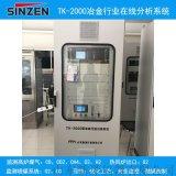 新泽仪器TK-2000转炉煤气回收在线分析仪,高炉富氧鼓风气氛在线分析