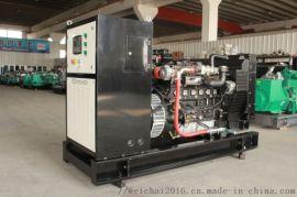 雷沃60kw**式发电机 工业废水处理专用燃气机