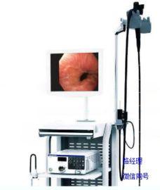 奥林巴斯电子鼻咽喉镜电子内窥镜ENF-VH