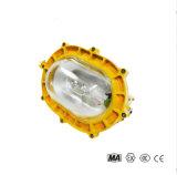 BFE8120 內場防爆應急燈 防爆應燈具
