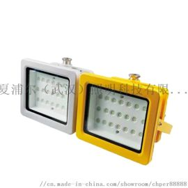 BTC6150_160W防爆灯LED投光灯