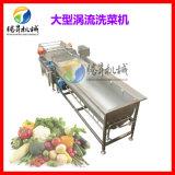 气泡涡流式大豆清洗机 玉米清洗震动沥水机