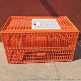 塑料成雞籠子供應商 裝雞塑料籠子廠家 裝鴨塑料籠子