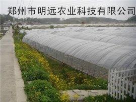 驻马店蔬菜大棚建设 晋中现代化温室大棚安装工程师
