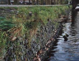 河道加固护坡锌铝合金格宾笼 河渠沟道整修建设格宾网 四川堤岸加固格宾垫