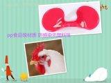 防啄鸡眼镜 防止鸡打架 pp材质防感染,鸡眼镜厂家