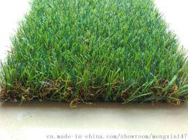 20MM加密加厚人造草皮假草幼儿园仿真草坪地毯厂家仿真草坪地毯