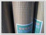 现货供应 热镀锌电焊网 重庆工地外墙保温  钢丝网