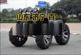 大公牛沙滩车 四驱 轴传动250cc景区专用车