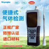 攜帶型氨氣NH3氣體檢測儀