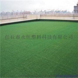 河北衡水足球场人造草坪