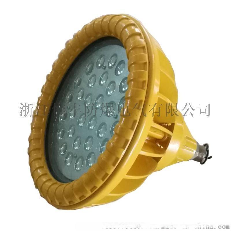 浙江溫州BLD91粉塵防爆LED免維護節能燈