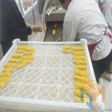 香酥带鱼裹糠机 带鱼段上浆机价格 专业上糠机厂家