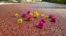 艺术压花地坪,透水混凝土,彩色沥青路面施工材料