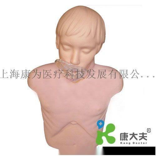 KDF/1001青年经济型心肺复苏操作模型—艾伦