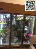 花店風冷鮮花保鮮櫃,延長鮮花保質期,玻璃鮮花展示櫃定做