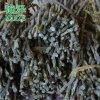 云南铁皮石斛干条与风斗的区别及食用方法/怎么泡茶