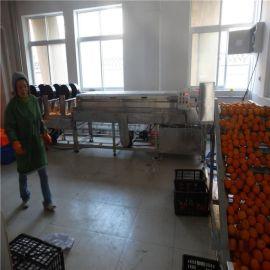 济南 洗橙机 橙子毛辊清洗机 脐橙毛刷气泡清洗机