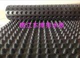 (卷材排水板)镇江2公分车库排水板厂家