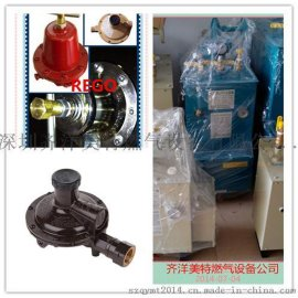 山西太原中邦150KG/H电热式气化炉厂家销售