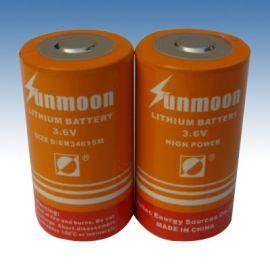 ER34615M锂亚电池 ER34615M D型 13Ah 3.6V锂亚电池