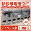养猪设备母猪定位栏|保胎母猪定位栏|供应商