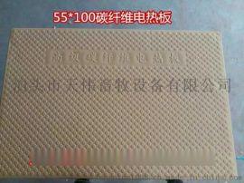 【河北天偉畜牧】長期供應加重碳纖維材質電熱板
