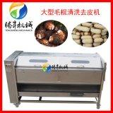 騰昇食品機械廠直銷大型毛棍清洗去皮機TS-M800