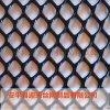 白色塑料围栏网 塑料网 养殖塑料网
