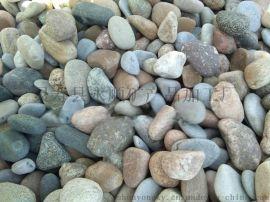 园林景观变压器鹅卵石直销 4-5厘米鹅卵石