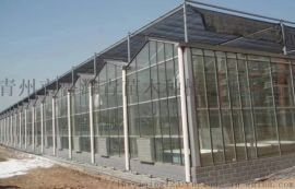 温室大棚生产厂家-专注智能温室大棚生产厂家