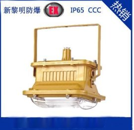 SBD1101-YQL50W免维护节能防爆灯,50W防爆无极灯,无极灯