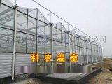 黑龙江哪里有建设智能温室大棚的厂家