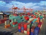 廣州至南非散貨整櫃國際海運服務,南非整櫃拖車報關,南非各大船公司訂艙服務
