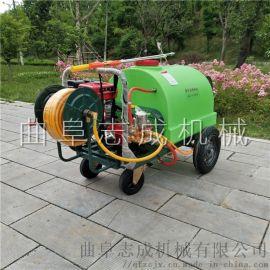 新款手推式高压喷雾器轻便式果树打药机