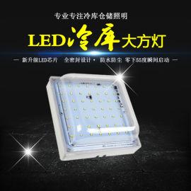 新型免驱动一体化20W大立方冷库灯 防潮防水灯