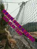 被动山坡防护网