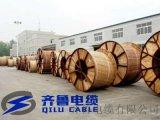 供应WDZ-VV 3*35+1*16齐鲁电缆